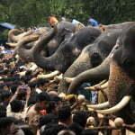 aanayottu_vadakumnathan_temple_308