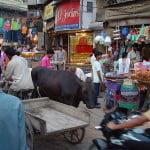 800px-Delhi_main_bazaar