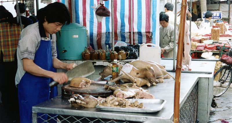 800px-Dogs_being_butchered_in_Guangdong,_China_1999