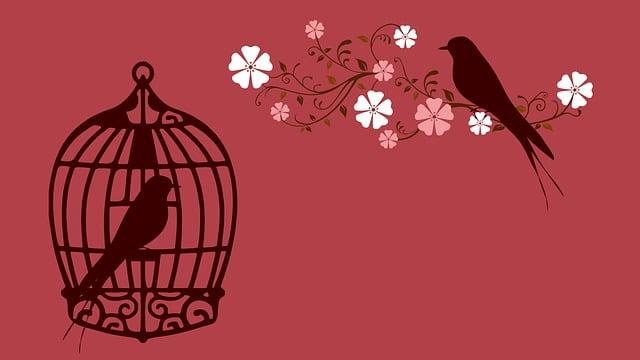 bird-855222_640