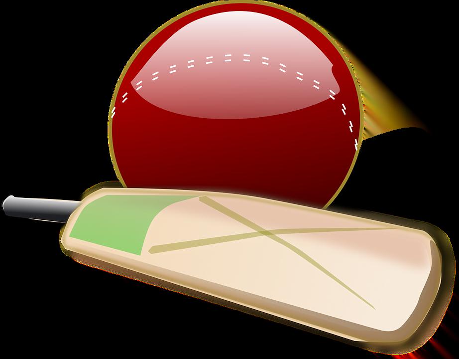 cricket-150561_960_720